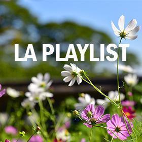 Les playlists